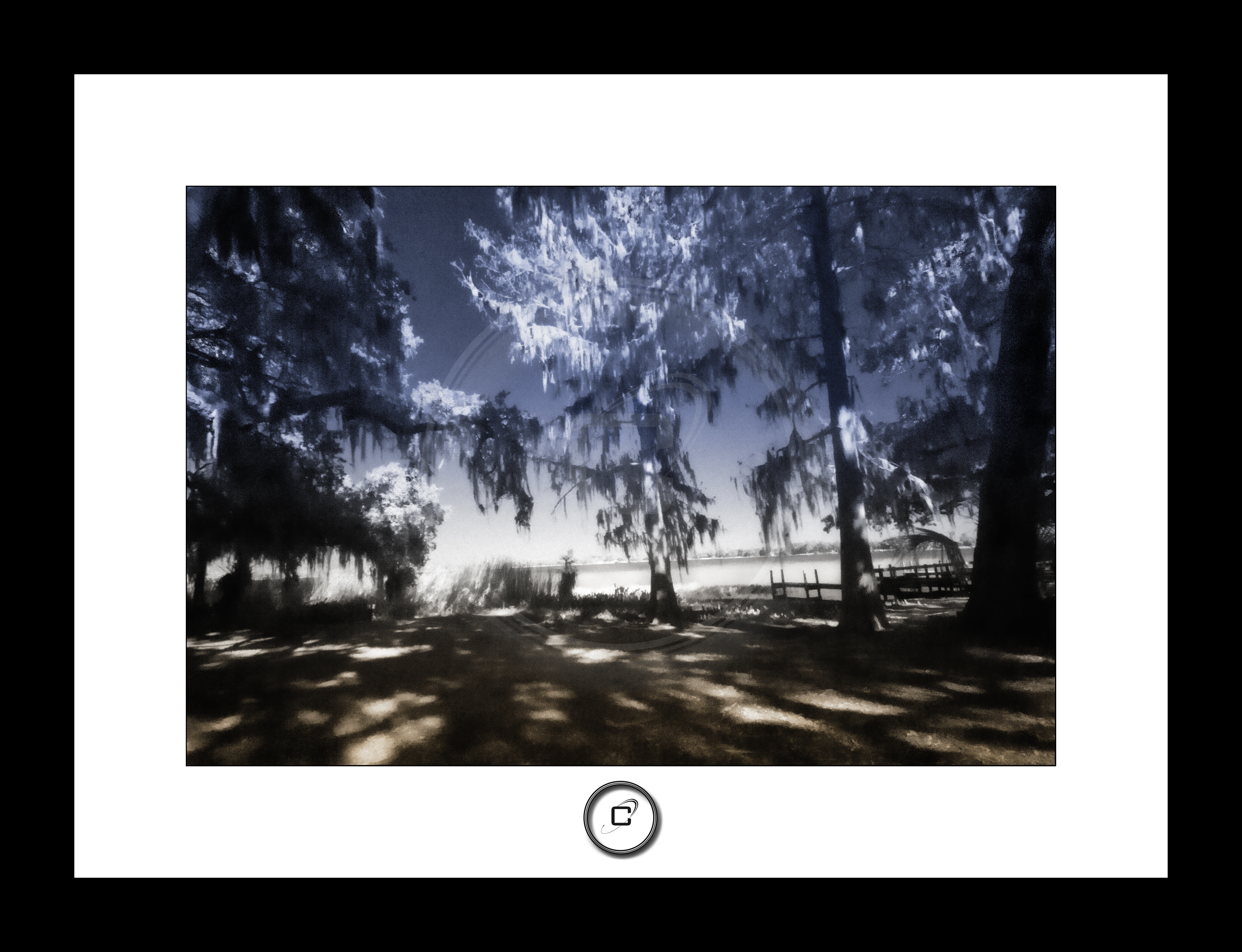IMG_5528-Edit-Edit-2